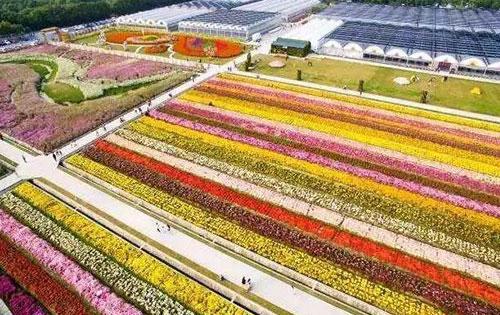 辉县市北田庄植物园