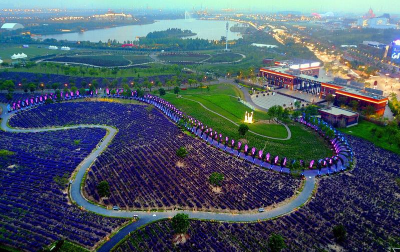 上海薰衣草公园