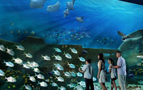 杭州江和美海洋公園