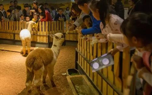 Future Zoo未来动物城(杭州大悦城店)