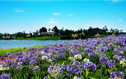 森哒星生态度假公园
