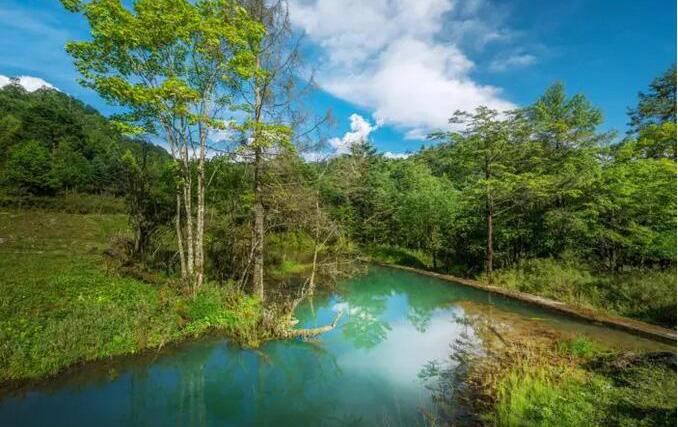 雅安二郎山喇叭河