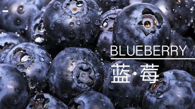 上海浦江蓝蓝莓园