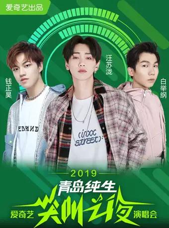 2019爱奇艺尖叫之夜演唱会大连站