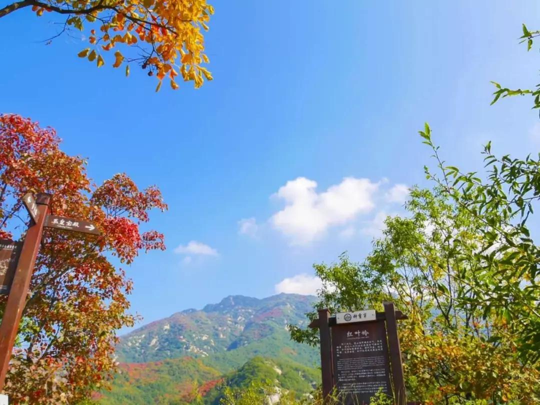 神灵寨旅游景点推荐,洛阳神灵寨一日游