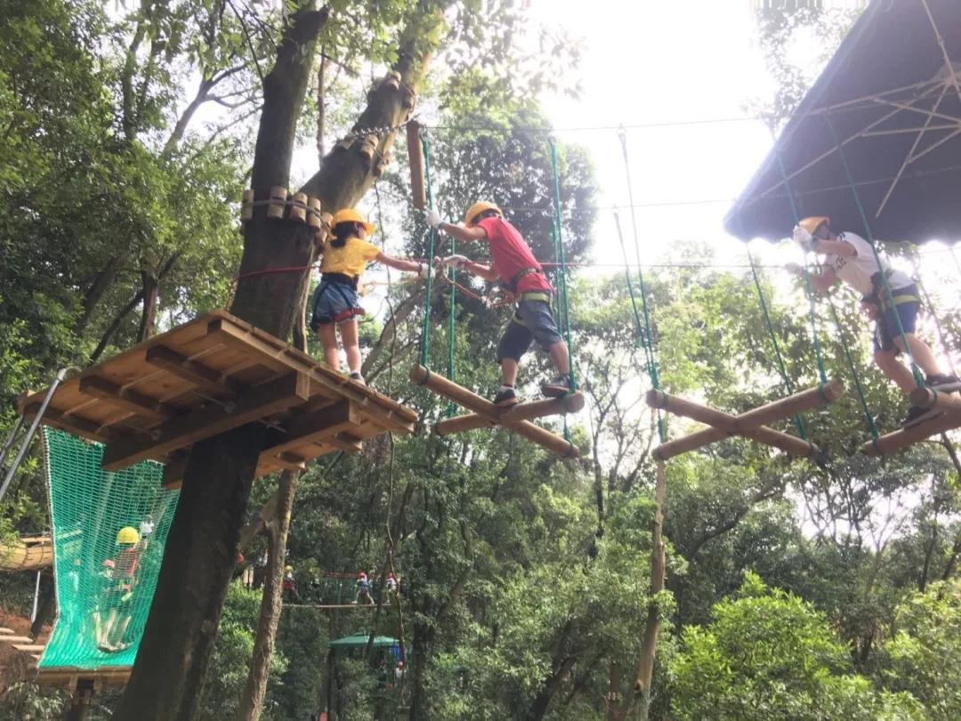 广州飞越丛林探险乐园怎么去,广州探险乐园地址