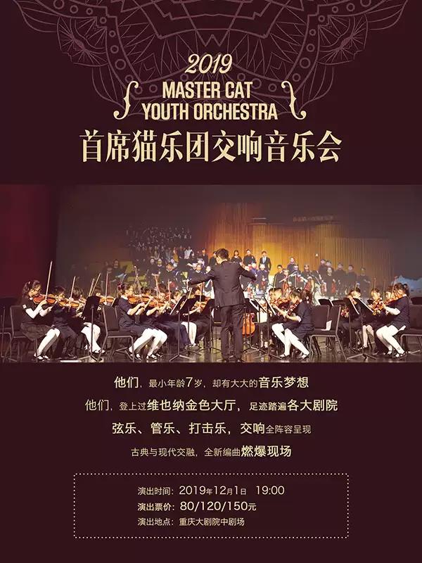 重庆首席猫乐团音乐会