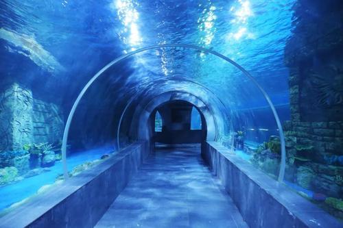 幻太奇海洋馆门票、西安幻太奇海洋馆门票多少钱