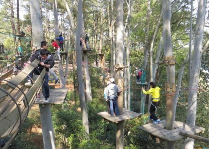 广州飞越丛林冒险乐园怎么去,广州天鹿湖飞越丛林地址