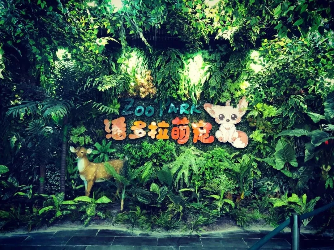 郑州潘多拉萌宠乐园