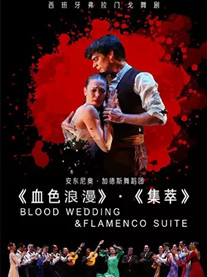 西班牙弗拉门戈舞剧《血色浪漫》《集萃》郑州站