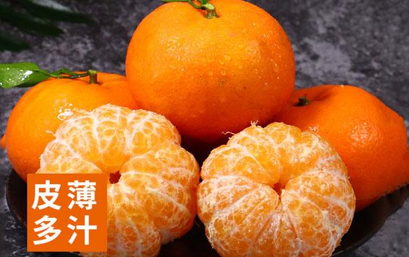 精选广西武鸣沃柑橘蜜柑新鲜水果蜜桔子非丑橘当季净5斤大果包邮