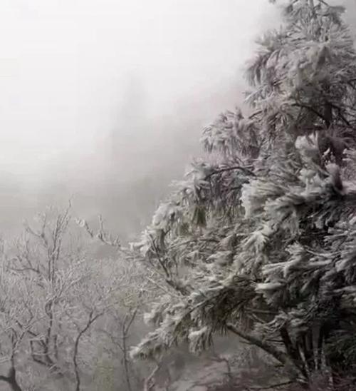 尧山开始下雪了 心心念念的滑雪可以安排上了