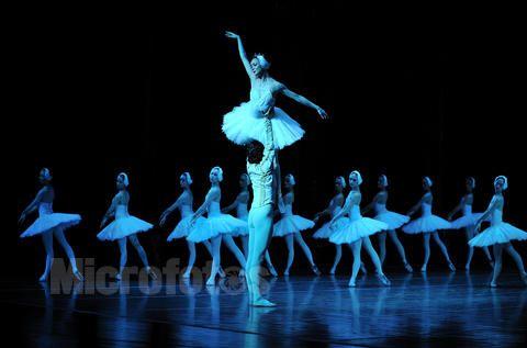 2018乌克兰基辅芭蕾舞团《天鹅湖》石家庄站【在线订票】
