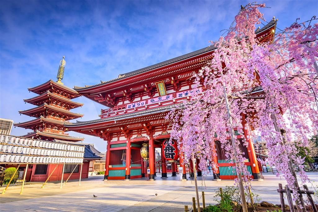 日本将征收出境税!不分国籍每人每次1000日元