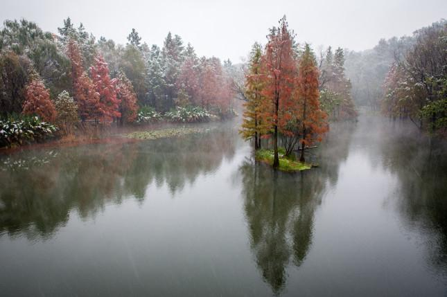 明孝陵湿地公园