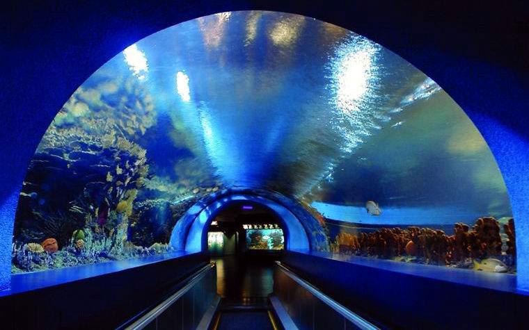 北京海洋馆门票