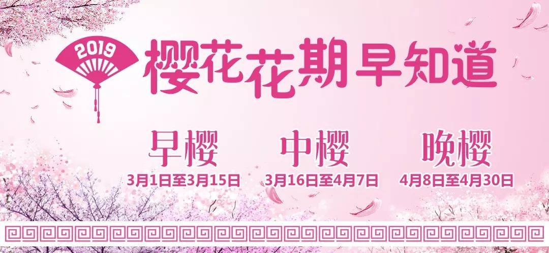 2019郑州丰乐樱花园地址在哪?如何去?