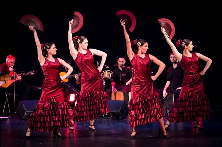 西班牙纯美弗拉门戈舞团广州演出门票