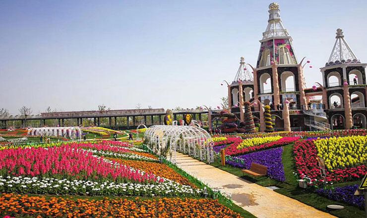 上海浦江郊野公园奇迹花园