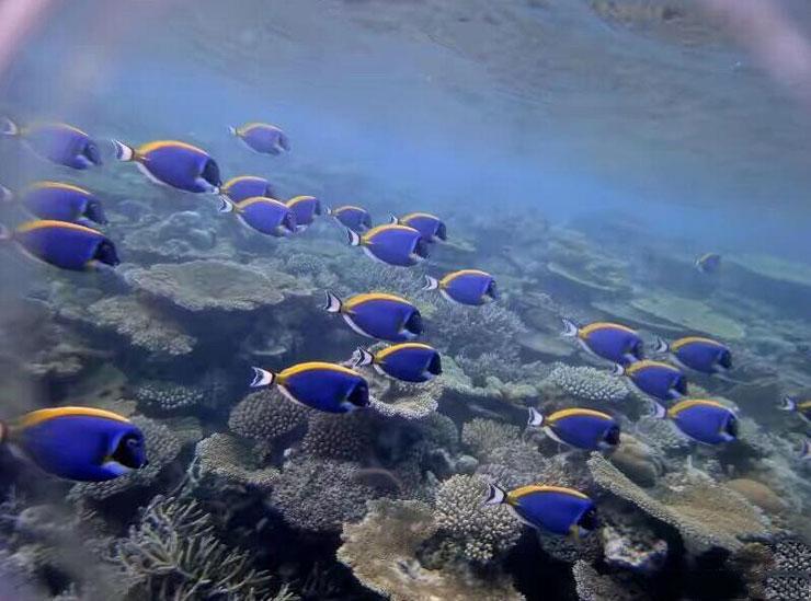 杭州海底世界