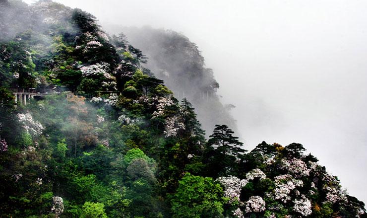 井冈山风景区