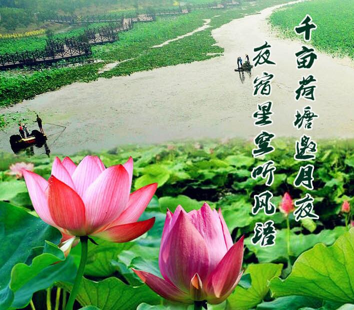 2019上海海湾国家森林公园门票价格、园区地址、游玩攻略