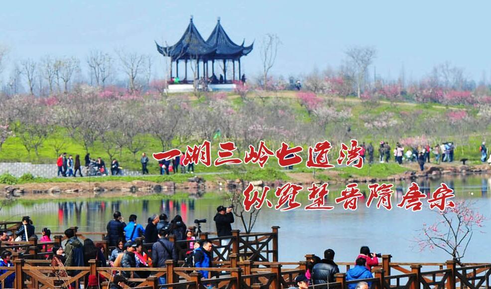 2019上海海湾国家森林公园怎么样?上海海湾国家森林好玩吗?