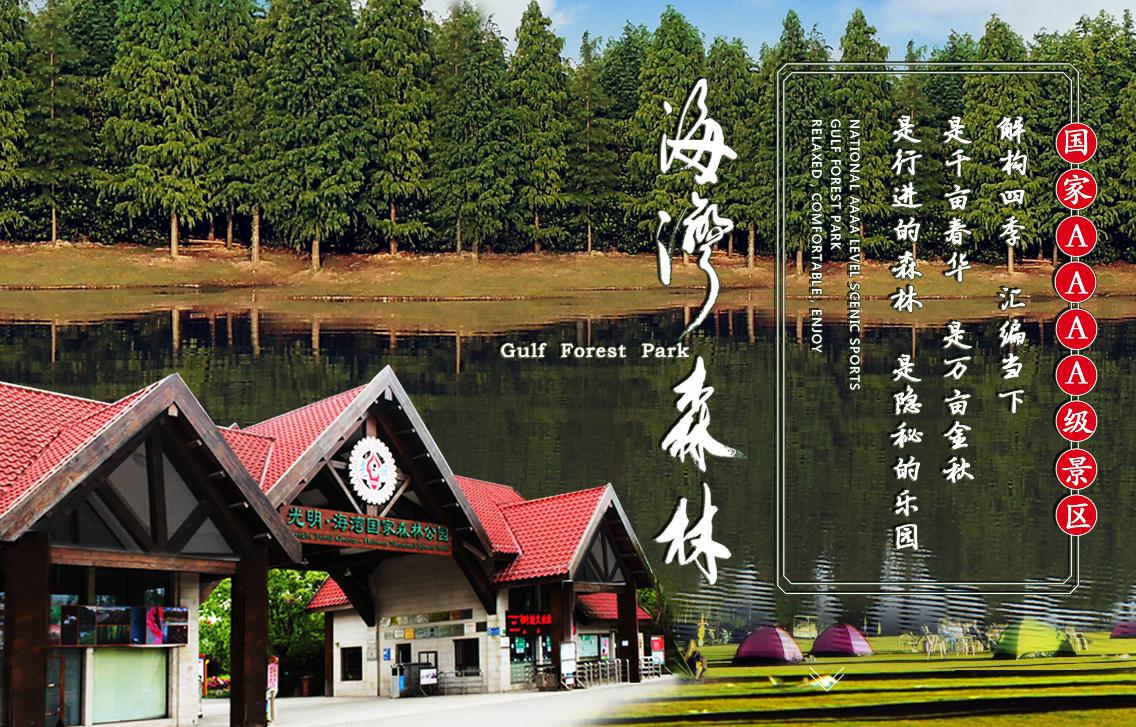 2019上海海湾国家森林公园怎么去?海湾国家森林公园交通指南