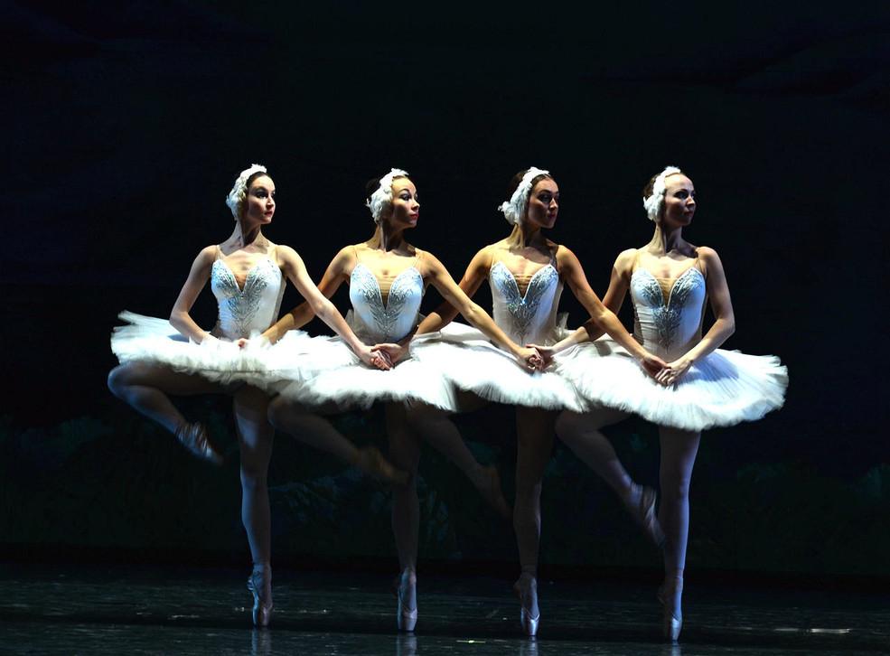 2019俄罗斯皇家芭蕾舞团《天鹅湖》洛阳站时间、地点、门票价格