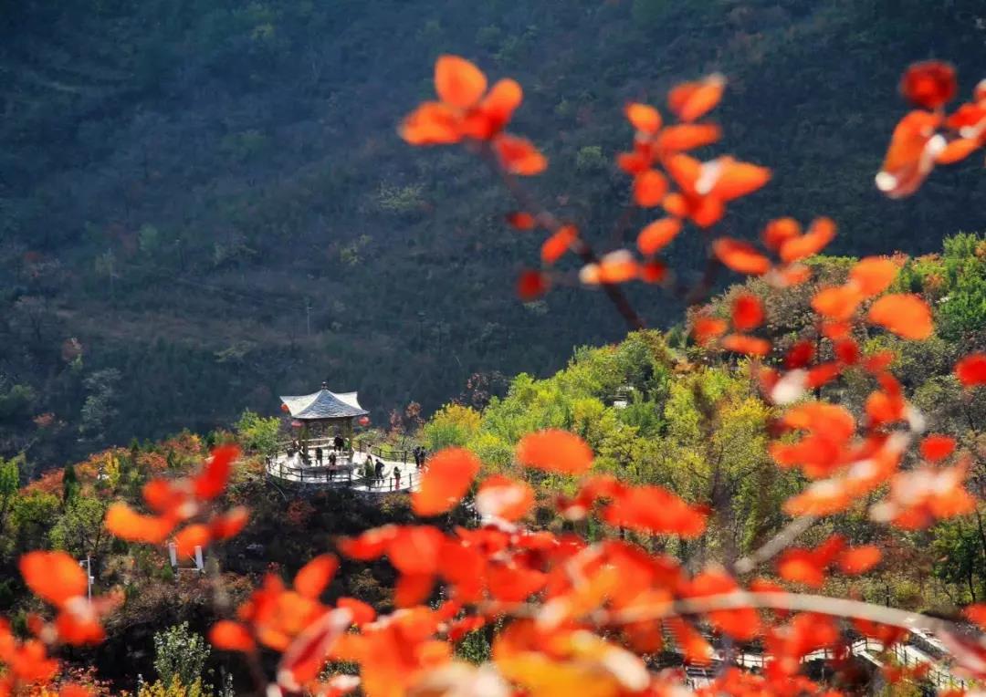 坡峰岭风景区