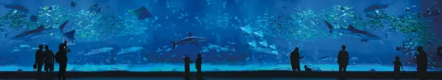 浩海立方海洋馆门票多少钱?2019浩海立方海洋馆门票预定团购