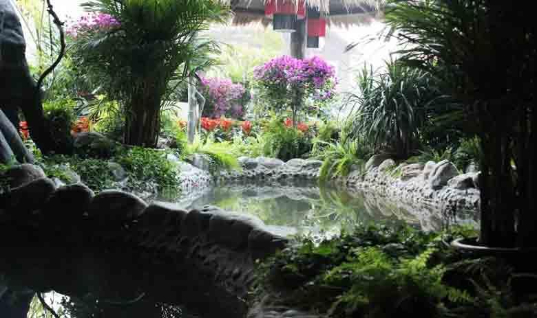 聊城阿尔卡迪亚温泉