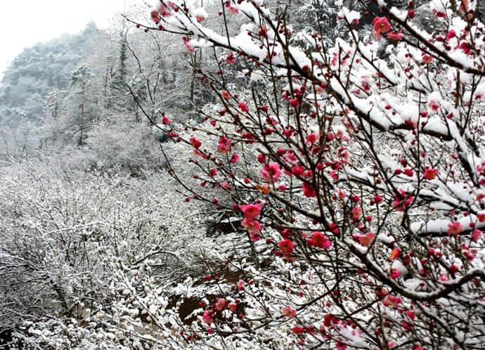 丹景山景区