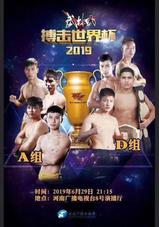 2019武林风搏击世界杯郑州站