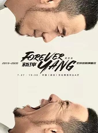 【FOREVER YANG】杨坤2019-2020巡回演唱会-武汉站