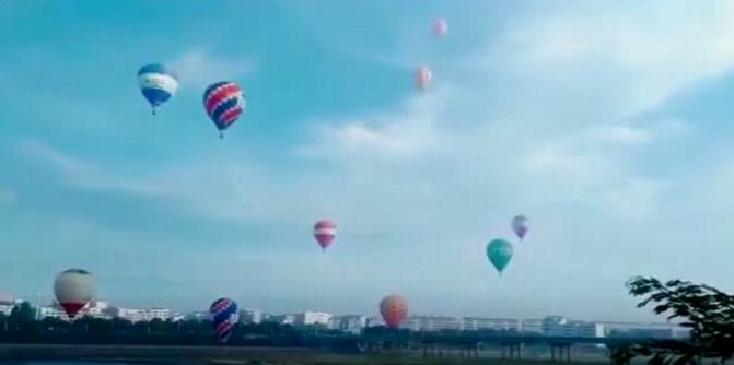 2019抚州广昌莲花节