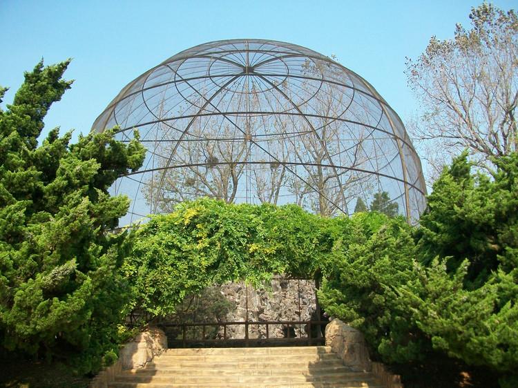 大阳山植物园