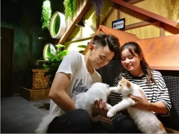 郑州正弘城室内动物,郑州室内动物园哪个好,郑州未来动物城团购,未来动物城郑州