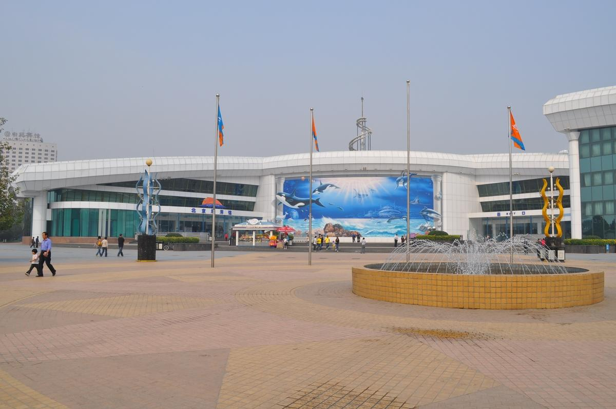 北京海洋馆门票(门票多少钱+订票+优惠票)