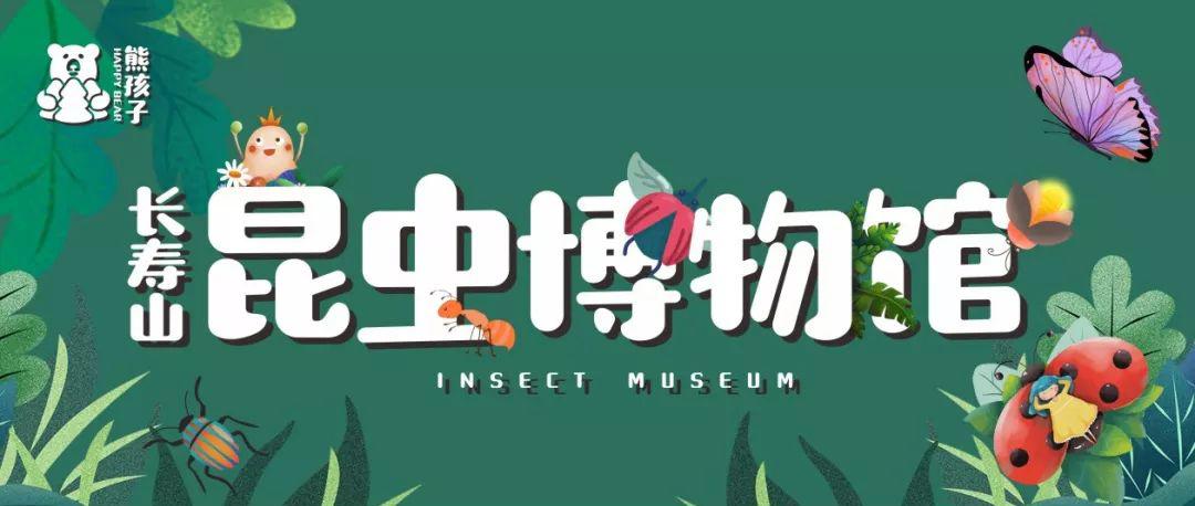 熊孩子长寿山昆虫博物馆