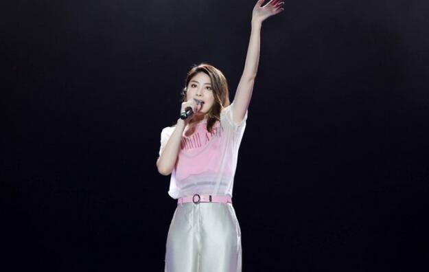 2019鑫动十年东莞群星演唱会
