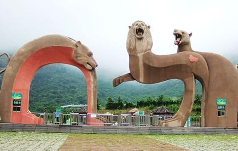 青岛森林野生动物世界门票、价格、多少钱