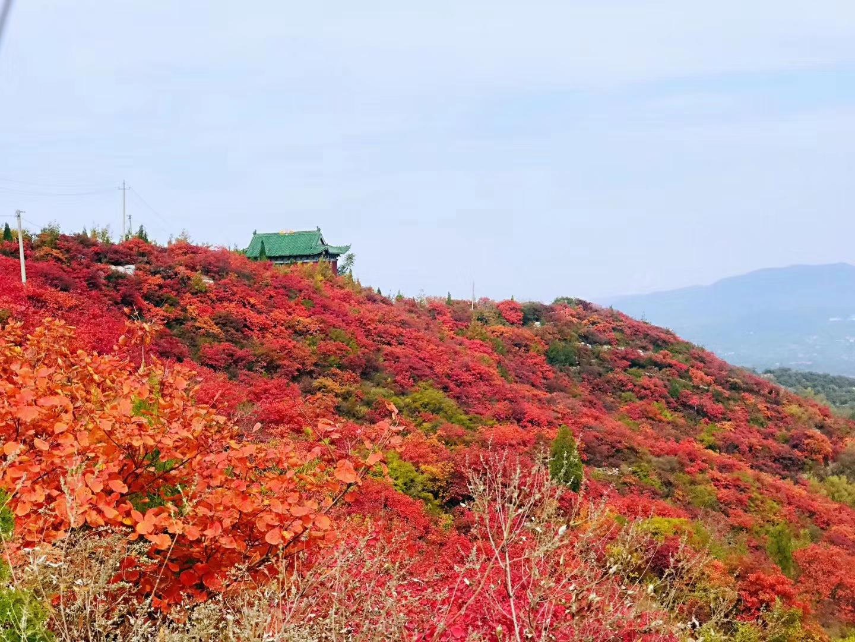 【长寿山红叶】长寿山红叶优惠票,郑州长寿山红叶特价票