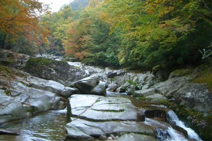 2019米仓山旅游景区