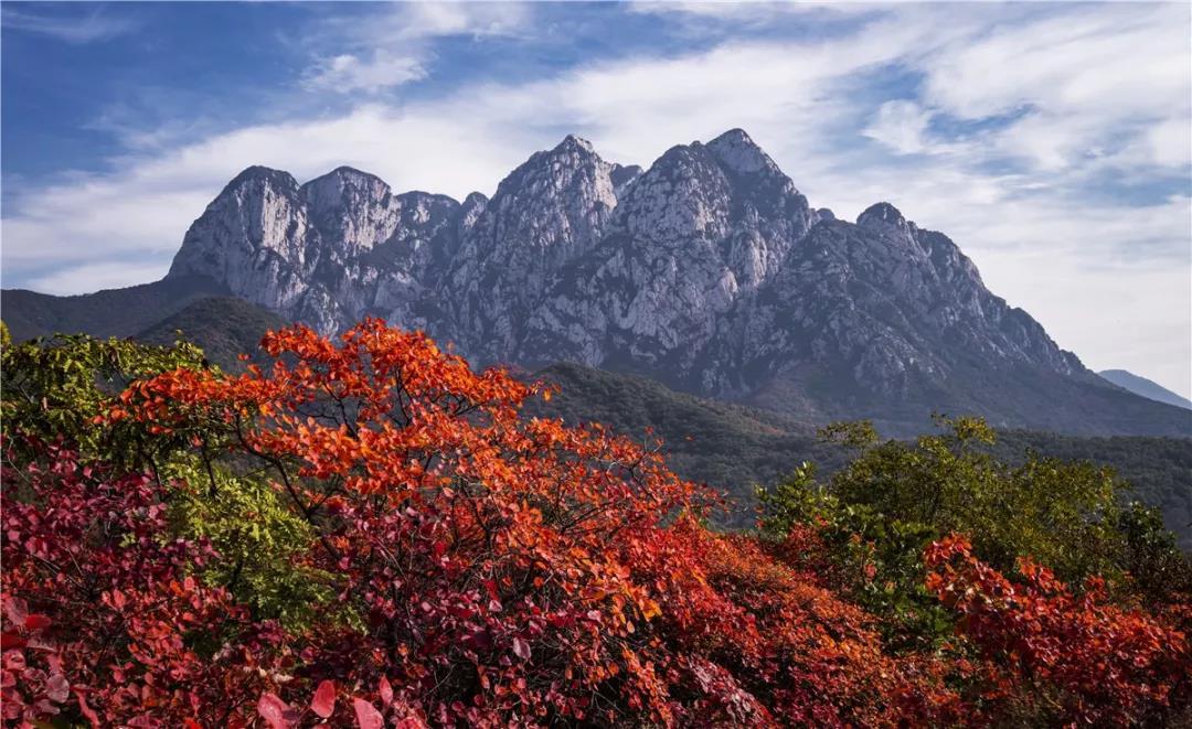 游嵩山,赏红叶,观大典,周末带家人速安排