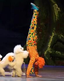 《小丑动物嘉年华之反斗动物城》唐山站