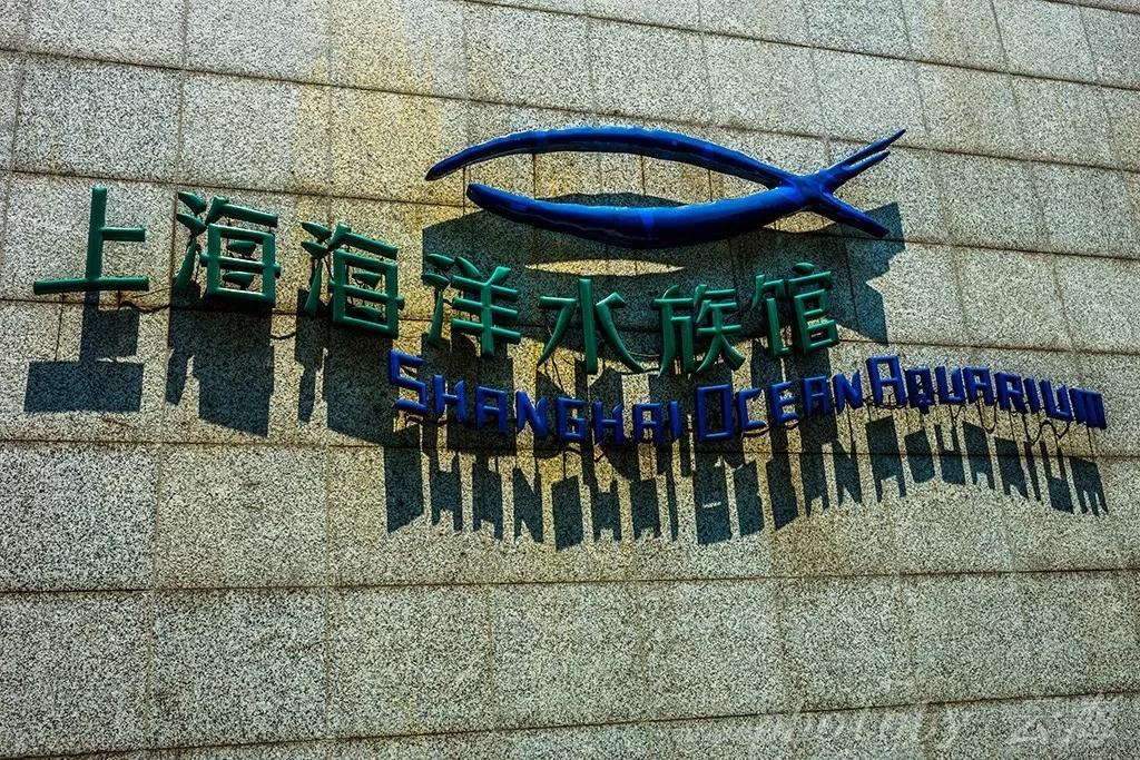 上海海洋水族馆攻略、上海海洋水族馆门票预订、门票价格