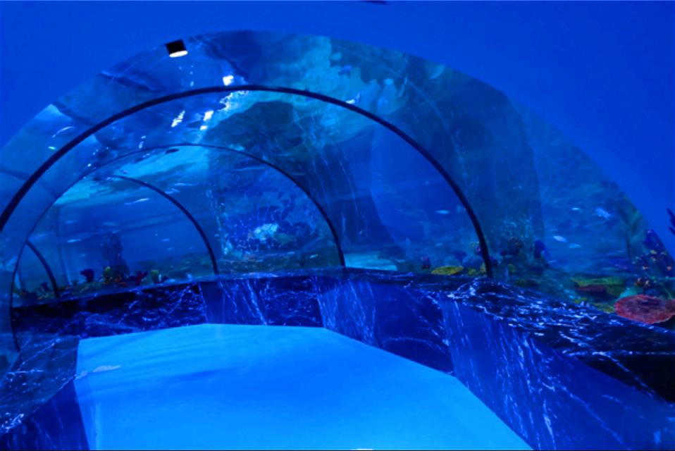 巴中海洋乐园49.9元特惠活动(营业时间+地址+项目+门票)