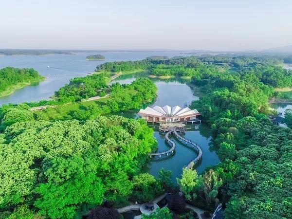 2020信阳南湾湖第二届湖畔灯光节即将盛大开幕、入场指南及旅游线路指南